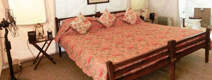 Rooms at Sher Bagh in Sawai Madhopur