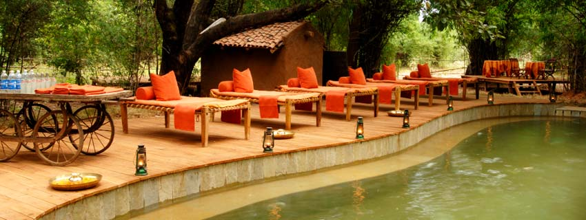 Swimming Pool at Taj Mahua Kothi, Bandhavgarh National Park