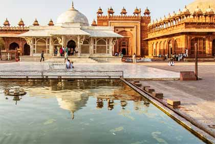 Cultural and Wildlife Tour of India
