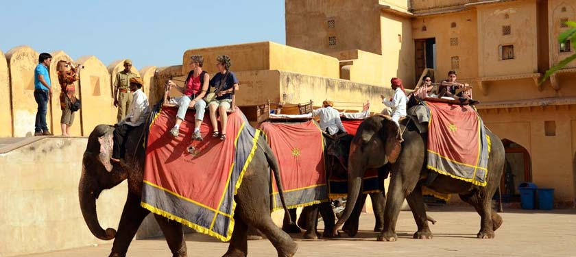 Elephnat Ride at Amer Fort