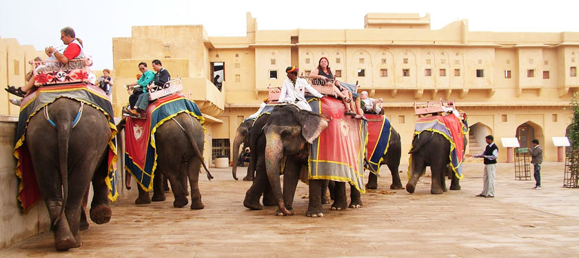 Elephant Ride at Amber Fort