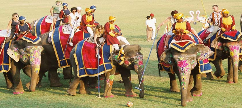 Elephant Polo Match in Jaipur